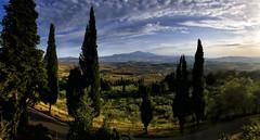 Val d'Orcia (blichb) Tags: blichb 2019 iphone panorama toskana toscana italien pienza landschaftsfotografie landschaft iphoneography zypressen oliven valdorcia