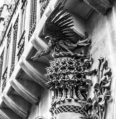 Phoenix (oscar_cozar) Tags: blanco black negro white gaudi fenix phoenix ave bird palacio guell palace barcelona