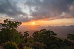 _DSC3257 (Yossef Steinberg) Tags: cyprus sunset troudosmountains trees pedoulas sonya7r3
