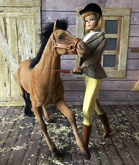 In the stable (Foxy Belle) Tags: horse brown black scale vintage wooden doll barbie scene 16 hay clover diorama mane flocked foal playscale park girl boots 1600 riding american feed stable equestrian