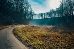 from skp-mm (skp-mm) Tags: 35mm fellbach ilce7rm4 landschaft nature sigma35mmf12dgdnart sony sonyalpha7riv winter a7riv α7riv badenwürttemberg deutschland