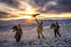 Three Eagle Hunters (David Swindler (ActionPhotoTours.com)) Tags: mongolia eagle goldeneagle eaglehunters hunter hunters cold winter