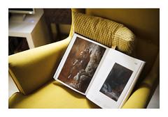 _K004266 (Jordane Prestrot) Tags: ♐ jordaneprestrot armchair fauteuil sillón livre book libro gustavedoré