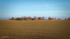 The Farming Life (buffdawgus) Tags: canon1585mmusmis california landscape ploughedfield farmland lightroom6 canon7d farm topazstudio californiacentralvalley sacramentovalley suttercounty