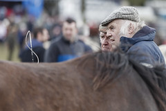 Serious conversation (Frank Fullard) Tags: street portrait horse color serious candid fair conversation discussion horsefair fullard frankfullard ireland irish colour galway face rural expression country farming talk whip farmer selling buying