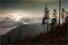 Stausee im Nebel (linke64) Tags: thüringen deutschland germany natur landschaft nebel himmel herbst wolken wald wolkenhimmel wasser stausee baum bäume berge berg elitegalleryaoi bestcapturesaoi aoi