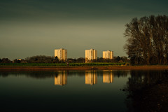 Frankfurt am Main (hobbit68) Tags: fujifilm xt2 sky sonne sonnenschein sunset sunshine sun spiegelung reflecting see altarm hobbyfotograf haus house trees baum wasser water himmel