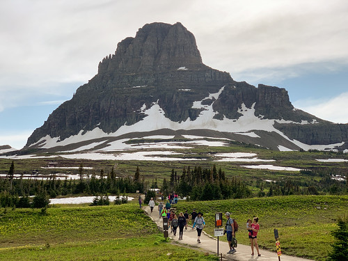 Busy Trail Behind Logan Pass VC