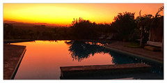 Les jardins de Taja (Jean-Louis DUMAS) Tags: dune soleil sunset sunrise sunlight sun arbre tree sable ciel desert sky sony panoramique panoramic paysage landscape landscapes dreams voyage trip travel traveler voyageur maroc