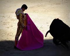 veronica (aficion2012) Tags: arles paques 2017 juan pedro domecq talavante corrida bullfight bull torero toro tauromachie tauromaquia taureau capote capa capeando alejandro toreador matador francia france provence artofbullfighting veronica