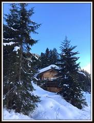 Bianco come la neve (magister111) Tags: altoadige snow neve südtirol winter white