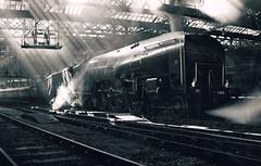 10000 (40011 MAURETANIA) Tags: newcastle hushhush lner 464 experimental 10000 londonnortheasternrailway steam