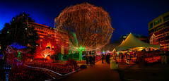 It's the most wonderful time of the year (Bombatron) Tags: christmas spirit festive season greetings nightime night photography explore flickr neon lights decoration new year 2019 canon 6d pano panorama 24 105l