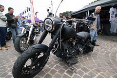 IMG_1579 (L.la) Tags: harley harleydavidson moto biker france canon eos europe eu 66 canoneos bikers argelessurmer pyrénéesorientales argeles 100d eos100d canoneos100d canon100d lla 2019 laurentlopez