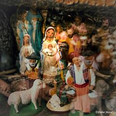 Crèche (préparée avec soin par Marité) 2ème version (didier95) Tags: creche noel santon vierge viergemarie figurine