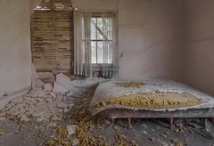 Don't go to bed hungry. (Ewski Images) Tags: bedroom antique classic vintage window bed rurex rural house exploration explore abandoned decay