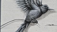 Noir / Mons - 28 dec 2019 (Ferdinand 'Ferre' Feys) Tags: streetart graffiti belgium belgique belgië urbanart bergen graff mons graffitiart arteurbano artdelarue urbanarte ferdinandfeys noir