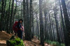 南湖大山第一天 (Philip@Tamsui) Tags: ricoh grdigital grd grii mountain 南湖大山 climbing hiking friends