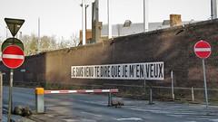 Yves Sonck / Mons - 28 dec 2019 (Ferdinand 'Ferre' Feys) Tags: mons bergen belgium belgique belgië streetart artdelarue graffitiart graffiti graff urbanart urbanarte arteurbano ferdinandfeys