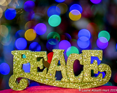 -20191228Tidings of Joy8-Edit (Laurie2123) Tags: christmas2019 christmasbokeh laurieabbotthartphotography laurieturner laurieturnerphotography laurietakespics litra odc odc2019 ourdailychallenge laurie2123