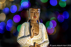 -20191228Tidings of Joy31-Edit (Laurie2123) Tags: christmas2019 christmasbokeh laurieabbotthartphotography laurieturner laurieturnerphotography laurietakespics litra odc odc2019 ourdailychallenge laurie2123