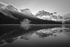 Emerald Sound Wave (k.cluchey) Tags: emerald lake bc yoho national park canada british columbia parks nature water reflection long exposure black white ansel adams inspired sound wave symmetry symmetric mountains snow winter fall autumn november trees slopes slope gloss glossy pretty awesome