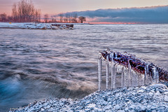 Ice covered log frozen in a sea of ice marbles - Kew Beach, Toronto (Phil Marion (179 million views - THANKS)) Tags: sunrise sunset dusk fun shadows hdr snow art model feet canon5diii 5d3 canon toronto canada candid architecture street portrait landscape wildlife nature explored bird urban flowers macro insect sony nikon longexposure ontario phil marion philmarion philippemarion explore skyline cityscape home sky water outside beach dog old young indoors travel night smiling