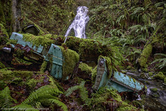 Green Machine (Drake Dyck Photography) Tags: fern abandoned nature waterfall rainforest classiccar stream crash decay vegetation wreck vauxhall btscritique teal longexposure