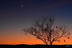 La lune assiste au coucher de soleil ... (Jehanmi) Tags: landscapelover landscape nikon skyporn ciel sky skyscape dreamscape nature sunrise coucherdesoleil sunset