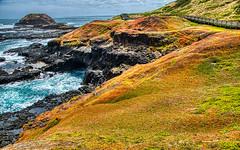 Wooden Path (John Hewitt 7) Tags: luminosity7 nikond850 phillipisland victoria australia thenobbies seascape ruggedcoastline sea boardwalk rockpools