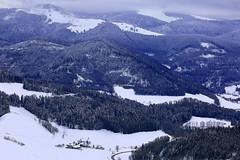Schwarzwald (ploh1) Tags: schwarzwald winter schnee weis berg bäume natur landschaft kalt