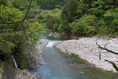 Shō River (Rick & Bart) Tags: 白川郷 shirakawago worldculturalheritagesite unesco japan nippon 日本 rickbart city landoftherisingsun rickvink canon eos70d gifu museum openairmuseum shōriver 庄川