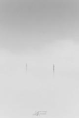Instant furtif (Ben Mouleyre Photographie) Tags: auvergne auvergnerhônealpes puydedôme clermontferrand cathédrale brume nuages brouillard canon canonfrance paysage cloud misty minimaliste
