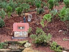 Squirrel and miniature house, Germany, World Showcase, Epcot, Walt Disney World, Lake Buena Vista, Florida, USA (gruntzooki) Tags: waltdisneyworld wdw disney florida fl lakebuenavista orlando epcot germany squirrel kaiju