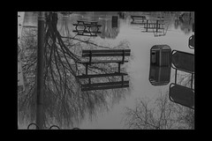 Reflections 05 (mini-b) Tags: tonbridge floods christmas 2019 blackwhite monochrome reflections racecoursesportsground sportsground luminar2018 aurorahdr2018 canon eos5dmkiv ef24105mm14lisusm ef1635mm128liiusm