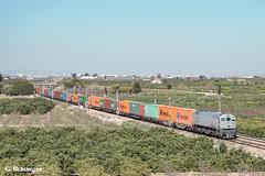 319-212 TECO (ɢ. ʙᴇʀᴇɴɢᴜᴇʀ [ ō-]) Tags: 319 319212 retales teco ferrocarril railway railroad ffcc tren locomotora green landscape grey