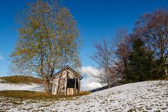 La maison courant d'air... (Savoie 11/2019) (gerardcarron) Tags: arbres automne cabane canoneos80d ciel cloud feclaz landscape massifbauges nature paysage savoie sky