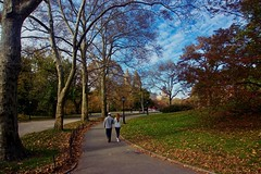 A walk in the park - New York City (Andreas Komodromos) Tags: andreaskomodromos autumn buildings centralpark city citylife cityscape color colorful colour fall landscape leaves man manhattan midtown nature newyork newyorkcity nyandreas nyc outdoors park path pavement people portfolio red seasons sidewalk sky skyline skyscraper skyscrapers street tourist travel tree trees urban walking walkway woman yellow