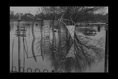 Reflections 04 (mini-b) Tags: tonbridge floods christmas 2019 blackwhite monochrome reflections racecoursesportsground sportsground luminar2018 aurorahdr2018 canon eos5dmkiv ef24105mm14lisusm ef1635mm128liiusm