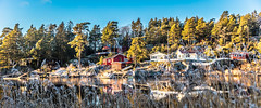 Idyllic at the fjord (Thor Edvardsen) Tags: idyllic water sea seaside cottage houses trees ocean sjø fjord canon canon5dsr ef2470mmf28liiusm ef70200mmf28lisiiusm reflections