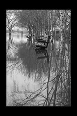 Reflections 13 (mini-b) Tags: tonbridge floods christmas 2019 blackwhite monochrome reflections racecoursesportsground sportsground luminar2018 aurorahdr2018 canon eos5dmkiv ef24105mm14lisusm ef1635mm128liiusm