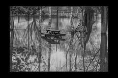 Reflections 09 (mini-b) Tags: tonbridge floods christmas 2019 blackwhite monochrome reflections racecoursesportsground sportsground luminar2018 aurorahdr2018 canon eos5dmkiv ef24105mm14lisusm ef1635mm128liiusm