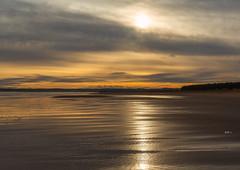 Tentsmuir beach Fife coast_G5A4501 (ronniefleming@btinternet.com) Tags: tentsmuirbeach eastcoast fifecoast sunsetting ph31fyronniefleming scottishcoastline scottishlandscapes sanddunes foresttrails