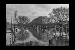 Reflections 01 (mini-b) Tags: tonbridge floods christmas 2019 blackwhite monochrome reflections racecoursesportsground sportsground luminar2018 aurorahdr2018 canon eos5dmkiv ef24105mm14lisusm ef1635mm128liiusm