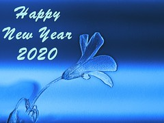 Wishing all a joyous and healthy 2020 (georgetan_chapter2) Tags: 2020 newyear celebration wish festiveseason