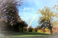 Towards the Rainbow (Jan 130) Tags: jan130 december2019 rainbow light newyear winter2019 pypehayespark nearhome happy2020 beautiful wonderment joy hope coth5