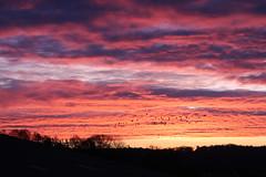 Ausflug (Hans-Jürgen Böckmann) Tags: ausflug sonnenaufgang sunrise