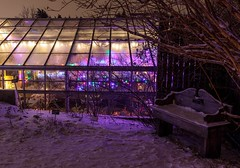 Greenhouse Glow (Karen_Chappell) Tags: greenhouse night longexposure botanicalgarden snow winter bench stjohns newfoundland nfld canada canonef24105mmf4lisusm atlanticcanada avalonpeninsula eastcoast purple lights xmas noel holiday christmas glass glow windows building