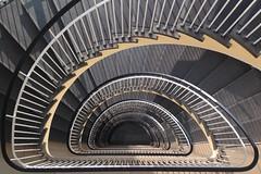 Semicircle (Elbmaedchen) Tags: stairs interior steps stairwell staircase escalier stufen escaliers treppenhaus lines architecture curves architektur spirale roundandround halbkreis upanddownstairs geländer iphone abwärts cjuttapaul