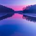 Quiet Flows the Dawn.jpg